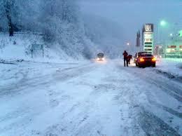 Забрана за камиони на патниот правец Берово Виница Кочани