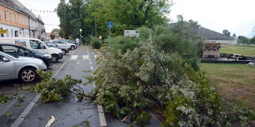 Невреме во Хрватска  најпогодена Истра  ветер со брзина од 130 км