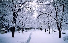Утре облачно со локални врнежи од снег и дневна температура од минус девет до минус три степени