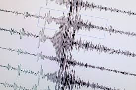 Земјотрес од 5 степени во Аргентина