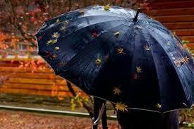 УХМР  Дождот во следните денови ќе го зголеми водостојот на реките
