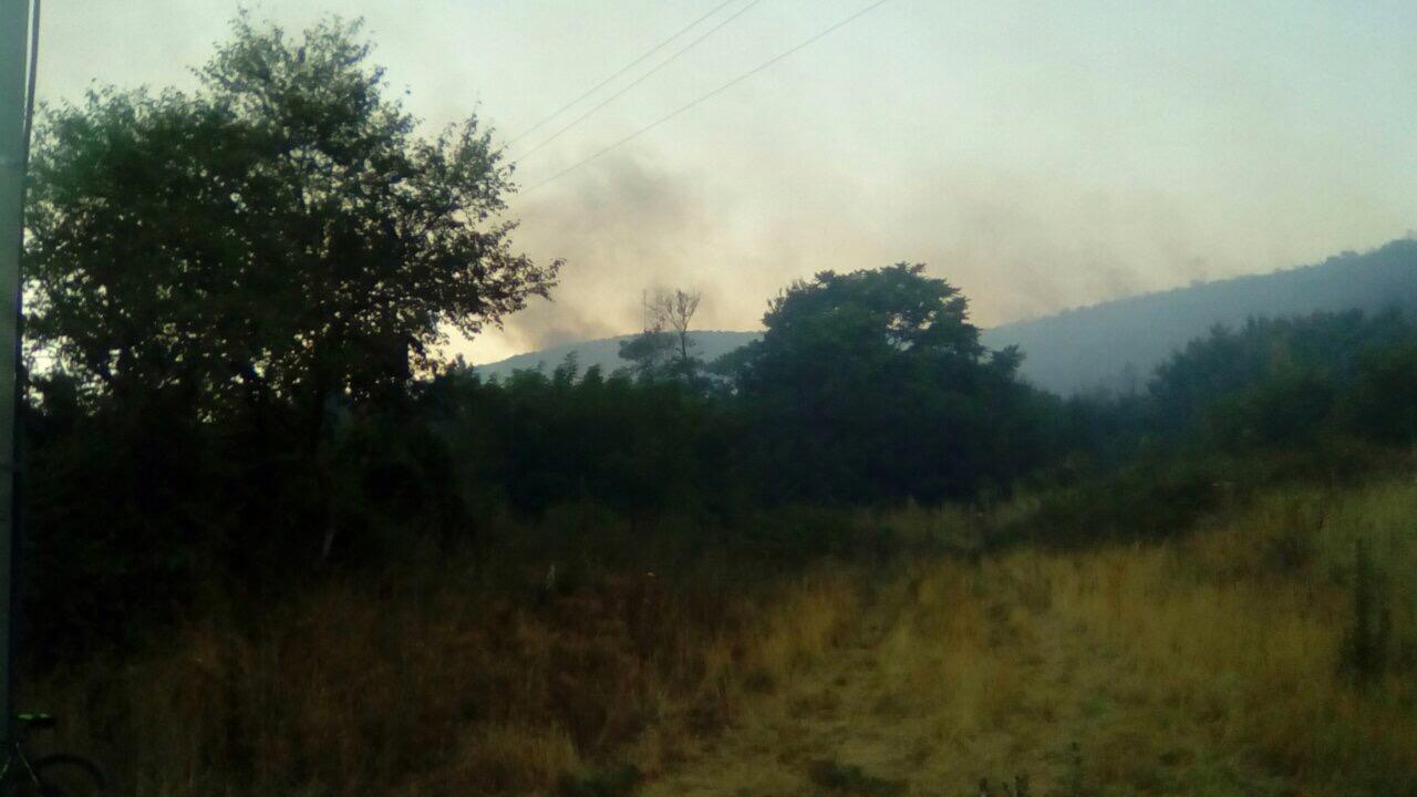 Десетина пожари беснеат низ Македонија