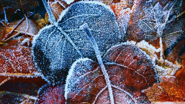 Минусни утрински температури  до 12 степени во текот на денот