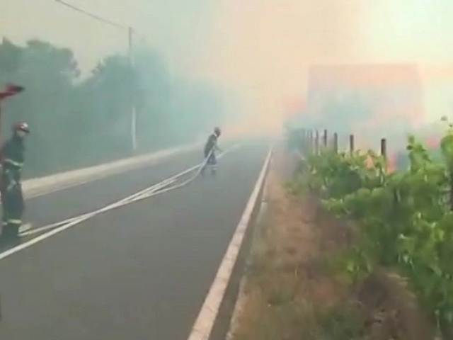 Повеќе од стотина пожари беснеат во Хрватска  Црна Гора и Херцеговина