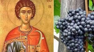 Свети Трифун одбележан во Тиквешијата