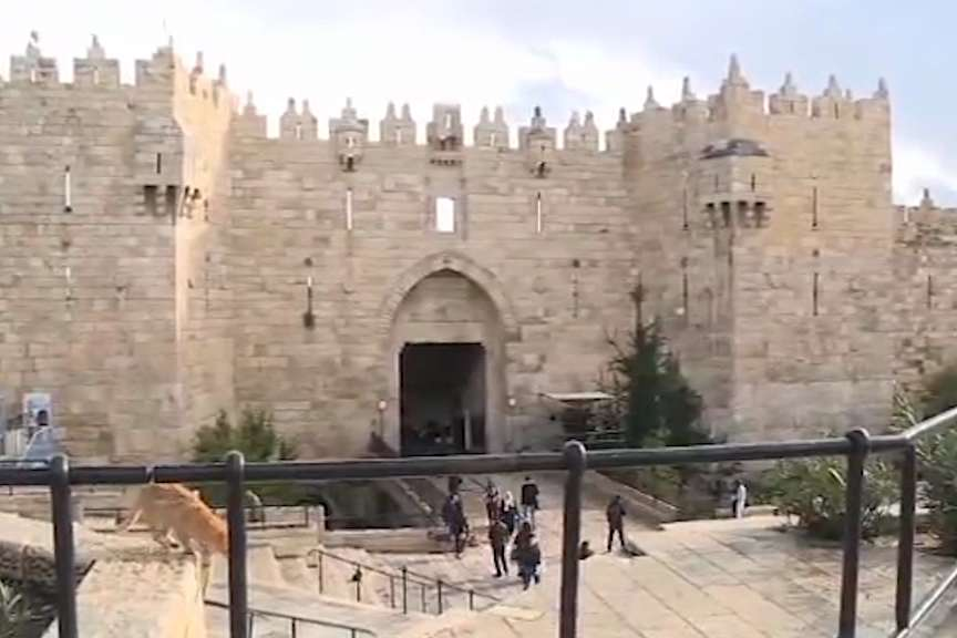 Брисел категоричен  Ерусалим му припаѓа и на Израел и на Палестина